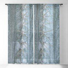 Cactus 05 Sheer Curtain