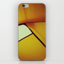 Outandabout iPhone Skin