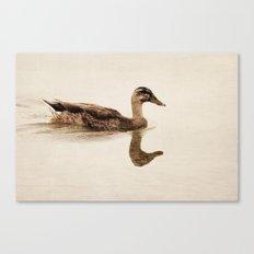 a summer swim Canvas Print