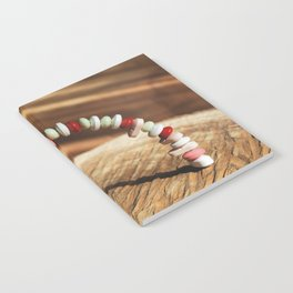 Dugs arch conept Notebook