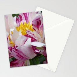 Peony - Raspberry Swirl Stationery Cards