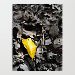 Yellow Loneliness Poster