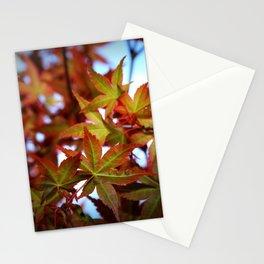 Acer palmatum 4249 Stationery Cards
