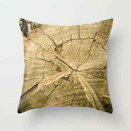 150 Years Old Throw Pillow