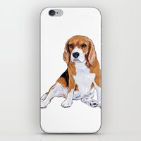 beagle iPhone & iPod Skins featuring Beagle by hadkhanong