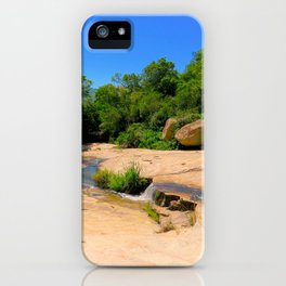 """A Walk on the Wild Side (ii)"" by ICA PAVON iPhone Case"
