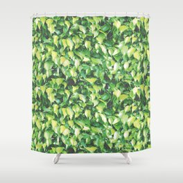 MILLION DOLLAR MIAMI HEDGE Shower Curtain