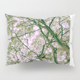 Monkey Web Pillow Sham