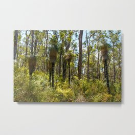 Aussie Bush, Mount Frankland South National Park, Western Australia Metal Print
