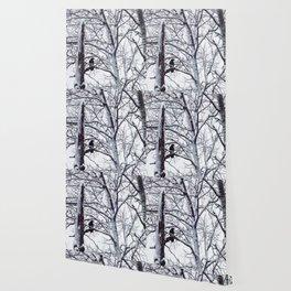 snow trees IIIII Wallpaper