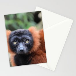 Close Up Of A Red Ruffed Lemur  Stationery Cards