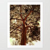 breathe in the air Art Print