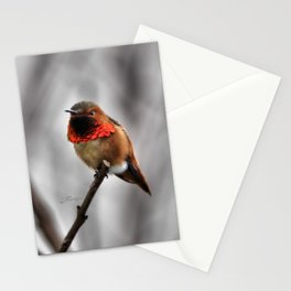 Allen's Hummingbird. © J. Montague. Stationery Cards