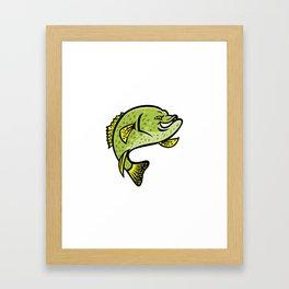 Crappie Fish Mascot Framed Art Print