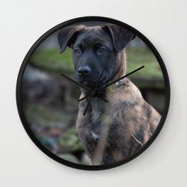 Asgard a cute Herder shepherd Wall Clock