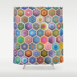 Rainbow honeycombs Shower Curtain