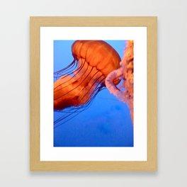 Gelly Fiish Framed Art Print