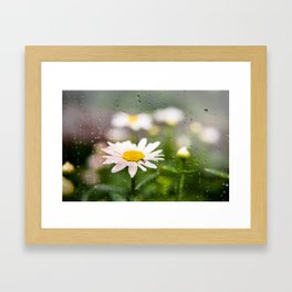 Daisies and Love Bugs Framed Art Print