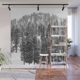 Mountain Snowfall // Snowy Peak Winter Landscape Photography Black and White Art Print Wall Mural