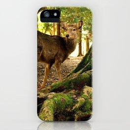 deer in nara koen iPhone Case