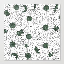 Daisy Mint Canvas Print