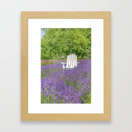 White Chair in a Field of Purple Lavender Flowers Framed Art Print