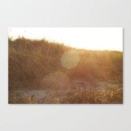Montauk Sand Dune Sunflare Canvas Print