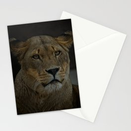 Lioness Portrait Stationery Cards