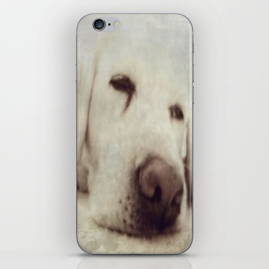 Pooch iPhone & iPod Skin
