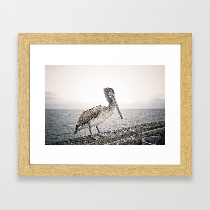 Boardwalk Pelican Framed Art Print