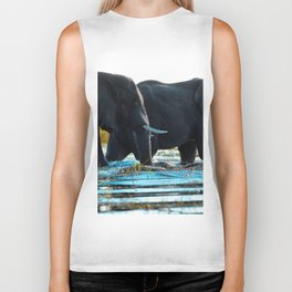 Elephants (Color) Biker Tank