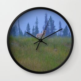 Early morning coyote sighting in Jasper National Park Wall Clock