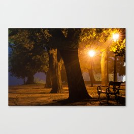 Foggy evening in the park Canvas Print