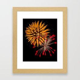 Firework Creations - Tulipfest 19 Framed Art Print