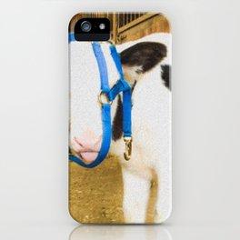 Incorrect.. iPhone Case