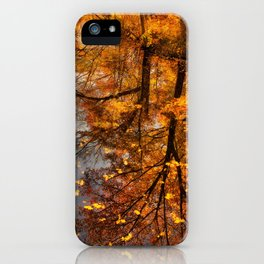 Fall Reflection iPhone Case