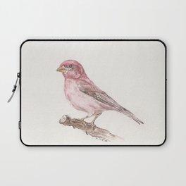 Purple Finch Laptop Sleeve