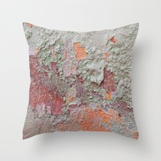 017 Throw Pillow