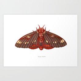 Regal Moth Art Print