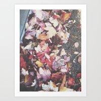 Autumn 13 Art Print