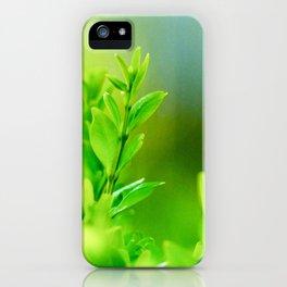 Green Harmony iPhone Case
