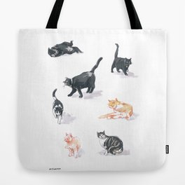 Local Cats Tote Bag