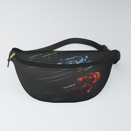 Take to the Skies Fanny Pack