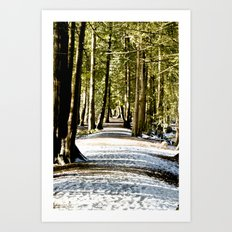 Running Path  Art Print