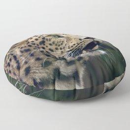 Panther Floor Pillow