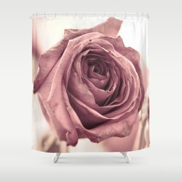 Dusky Rose, 2 Shower Curtain