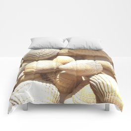 Sea Shells Collection Comforters