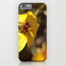 Sunny iPhone 6s Slim Case