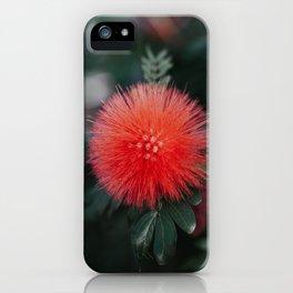 Horton iPhone Case