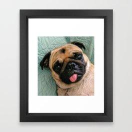 Hi There Framed Art Print